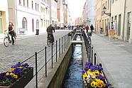 Bach in Wittenberg