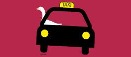 Goose Taxi