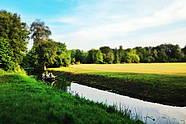 Wörlitz Garden Realm